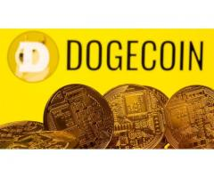 The value of cryptocurrency Dogecoin 2.0 soars more than 450%
