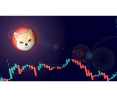 Coinbase accepts Shiba Inu and cryptocurrency soars almost 30%
