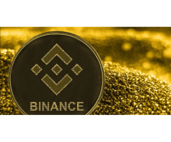 Binance Wants to Increase the Value of Binance Coin Through a BSC Fee-Burning Proposal